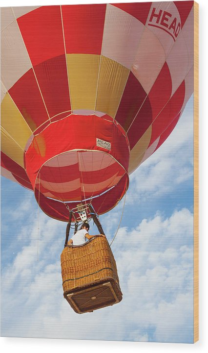 Up Up and Away - Wood Print