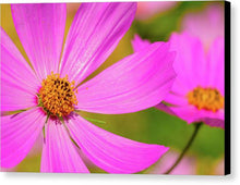 Load image into Gallery viewer, Wild Purple Daisy Pair - Canvas Print