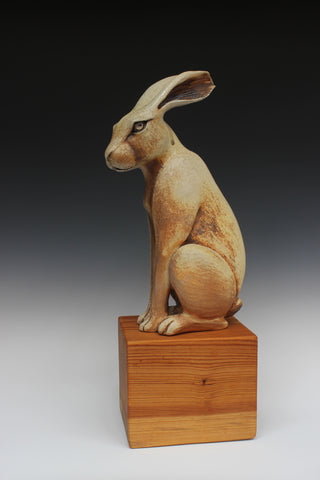 Katherine Maloney - Sitting Hare