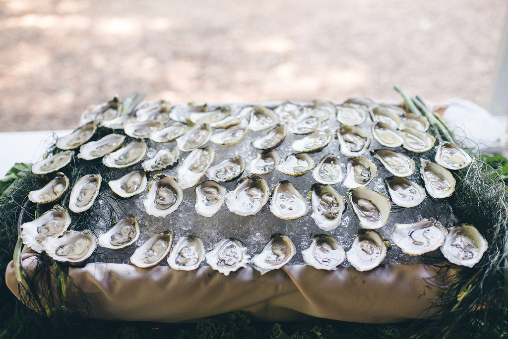 Rachel and Matthew - June Wedding at Awbury Arboretum | Oysters | Tallulah Ketubahs