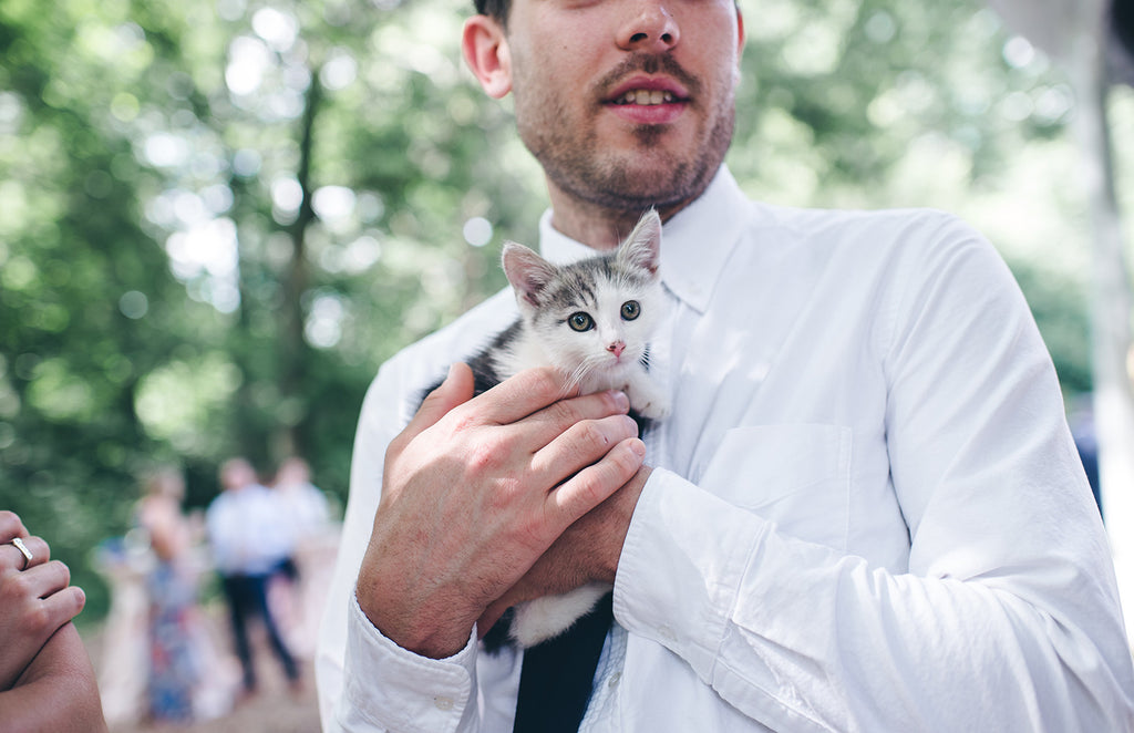 Rachel and Matthew - June Wedding at Awbury Arboretum | Kittens for Adoption | Tallulah Ketubahs