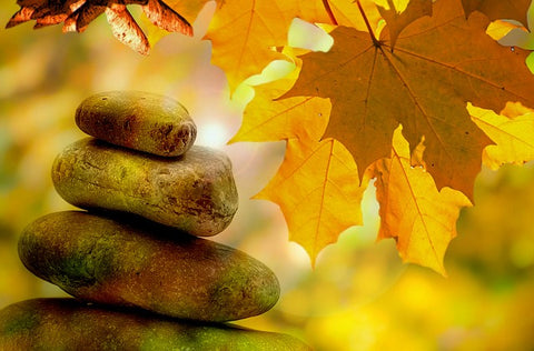 stones and autumn leaves balance