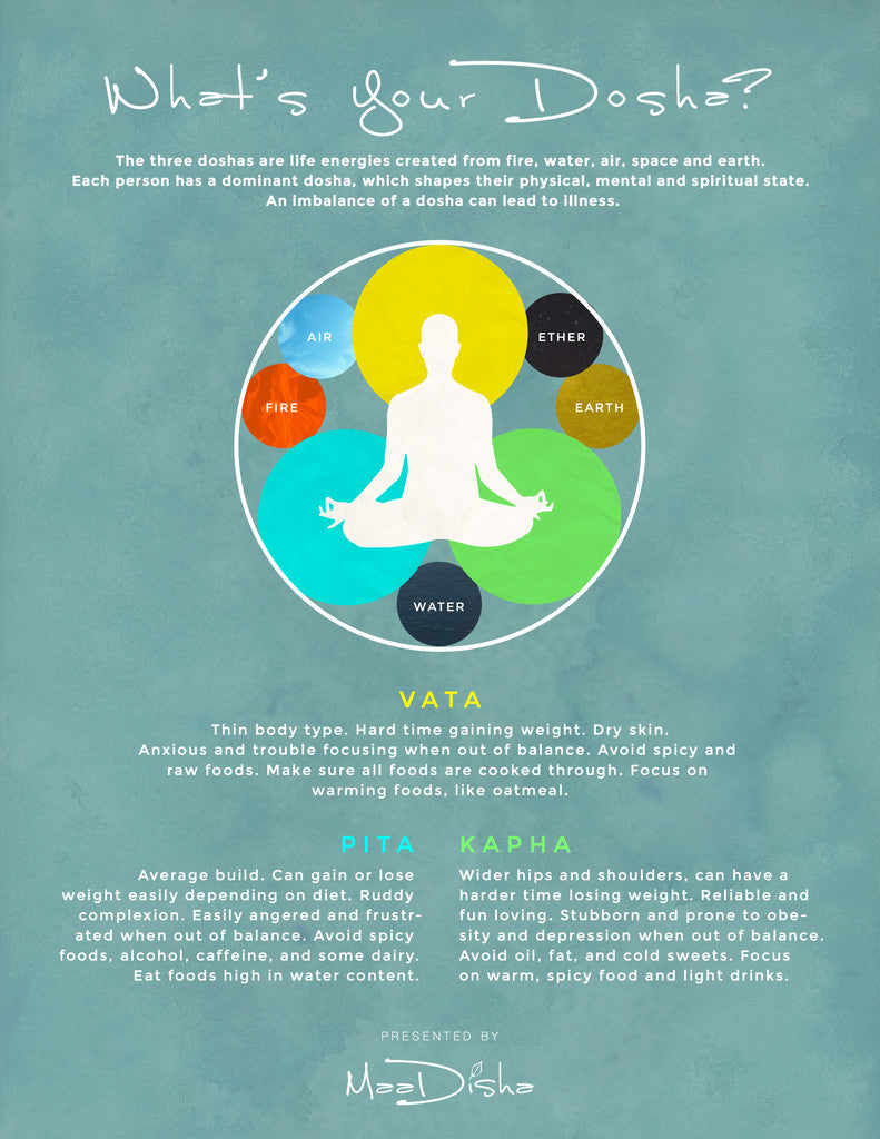 description of vata kapha pitta ayurvedic doshas infographic