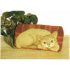 Kit - Cat Brick Cover - Rug Hooking Supplies