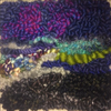 Hook What You Feel: Yoga & Rug Hooking with Mariah Krauss - June 26-29, 2019 - Rug Hooking Supplies