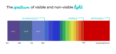 spectrum of visible and non visible light