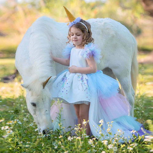 Rainbow Unicorn Birthday Dress Up Costume