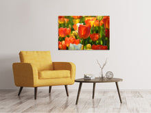 Lade das Bild in den Galerie-Viewer, Leinwandbild Close up Tulpenfeld