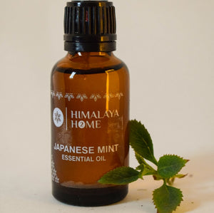 Japanese Mint Oil - 30ML