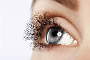 How long does the procedure of Eyelash Extensions take?