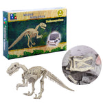 kit fouille fossile squelette dinosaure