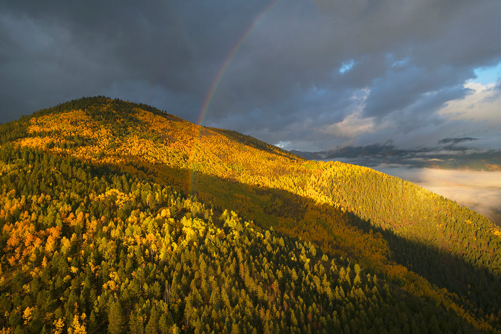 Rainbow into Aspens