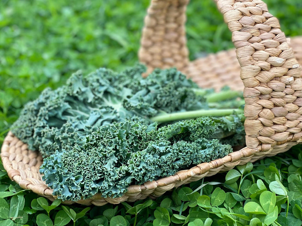 Kale- 1 Bunch