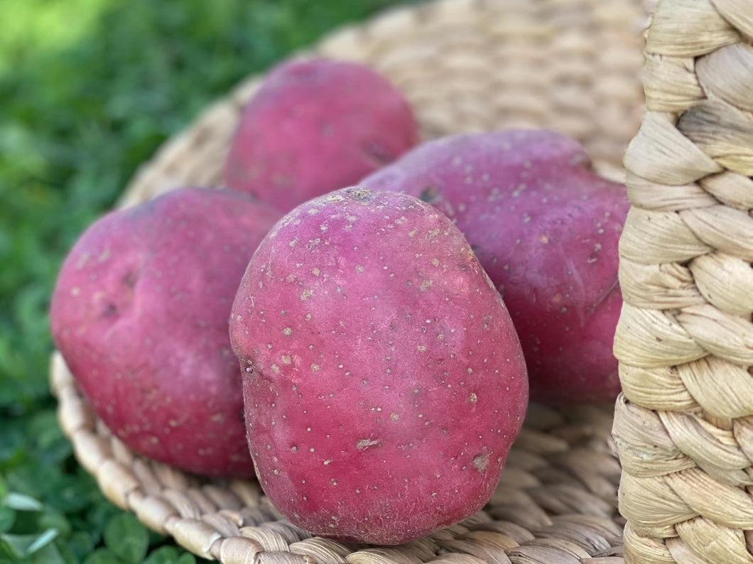 Potatoes-Red 1lb