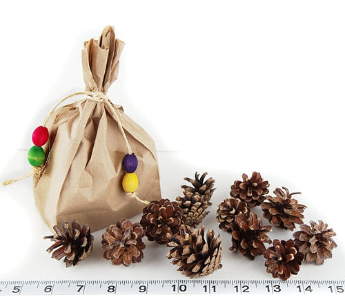 Bag of Pinecones