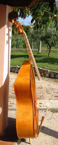 Violone in re 104 cm