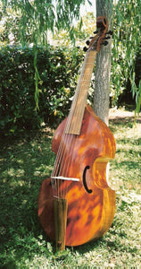 Baroque Bass Viol Collichon for Beginners