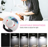Load image into Gallery viewer, LED Magnifying Lamp on Wheels Dimmable Floor Standing Magnifier - Beamnova
