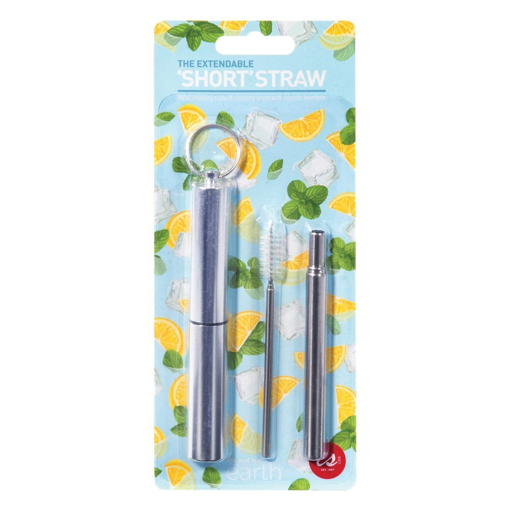 EXTENDABLE SHORT STRAW & BRUSH SET