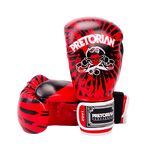 Gants de boxe PRO PIRATE