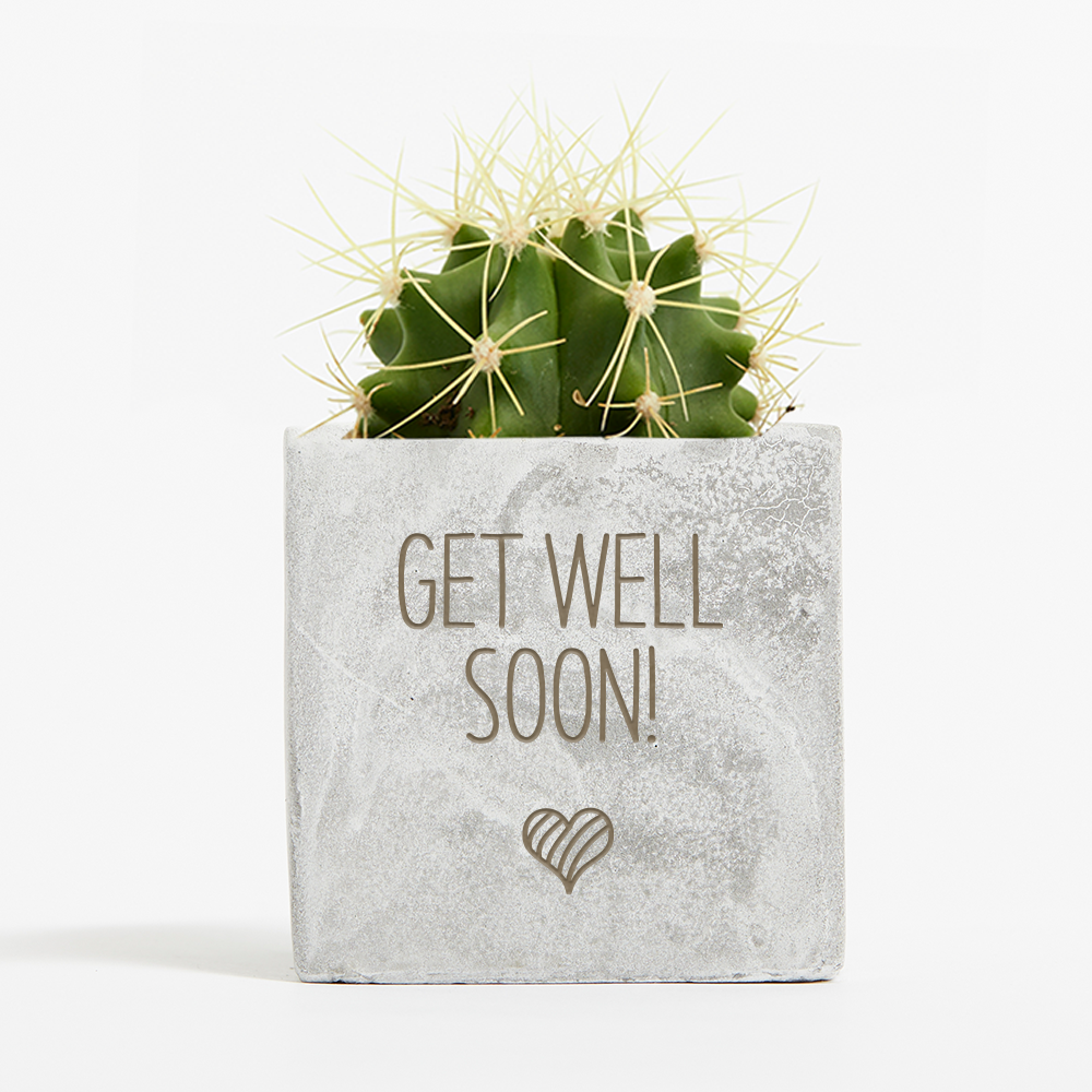 Get Well Soon Cactus