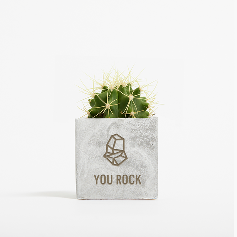 You Rock Cactus Small