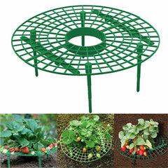 Balcony Vegetable Rack