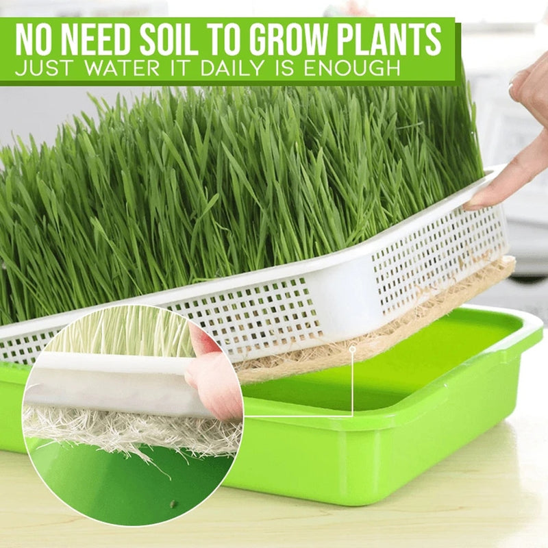 Nursery Pots Sprouting Tray Bean Sprout Planter Small Planting Garden Home Office Plastic 2-Layer Hollow Kit Germination Tool
