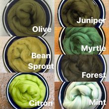 Load image into Gallery viewer, Forest Merino Wool Roving - 21.5 micron -1 oz - For Nuno Felting, Wet Felting, Weaving, Spinning and More