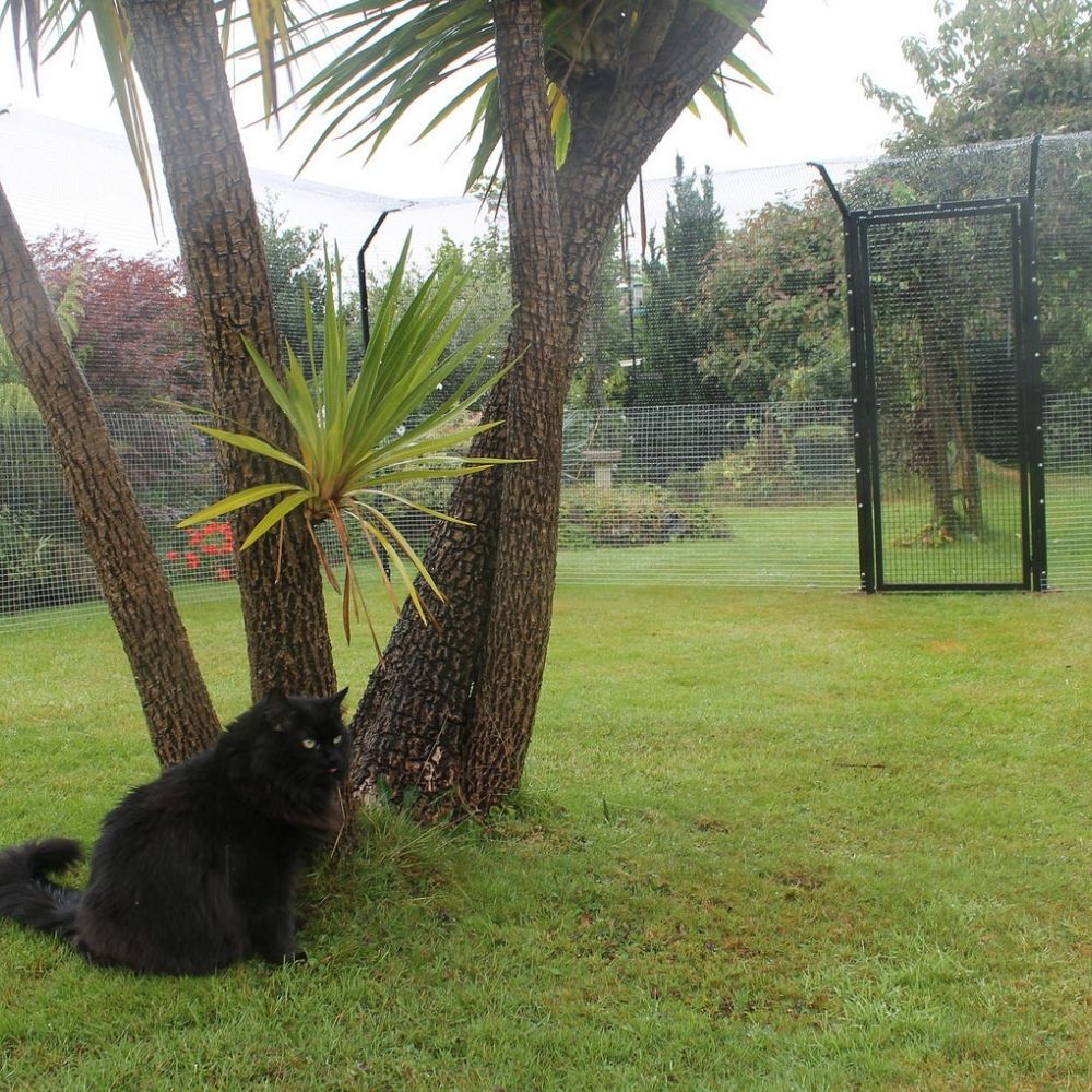 Outdoor Cat Enclosure for Turf