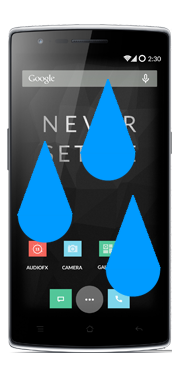 OnePlus One Liquid Damage Repair