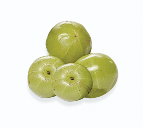 Emerald Labs Amla Fruit Image