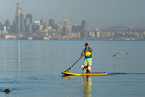 Mike paddling infront of San Francisco with his dog
