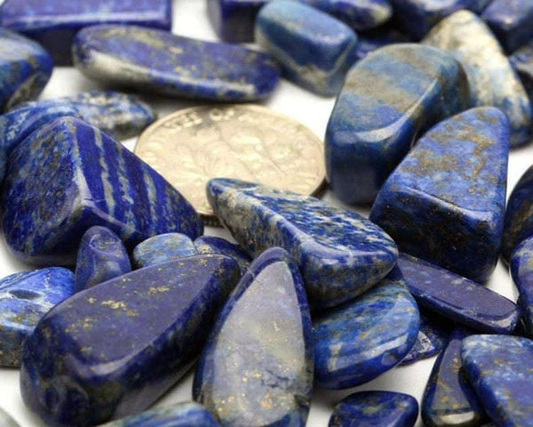 Natural Lapis Lazuli Tumbled Crystal MEDIUM size about 9-22mm Chips Stone Assorted Mixed Sizes Bulk Supply Lot 10 pc Set