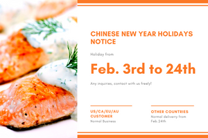 Spring Festival Holiday Notice