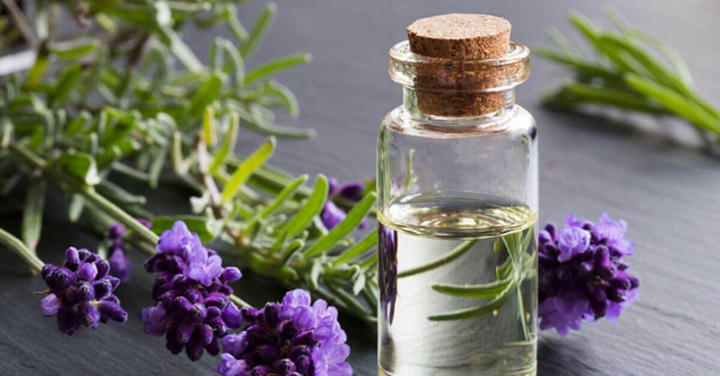 10 Best Essential Oils and How to Use Them