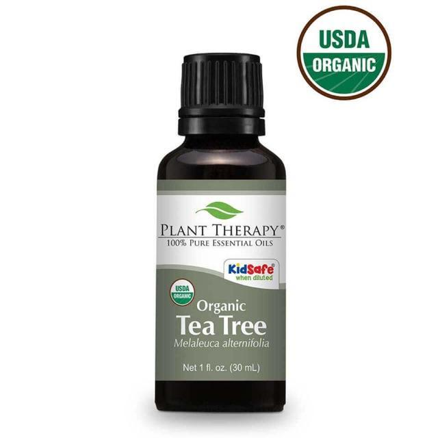 Plant Therapy Tea Tree Organic Essential Oil