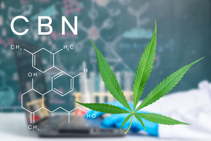 Have you heard of CBG and CBN?