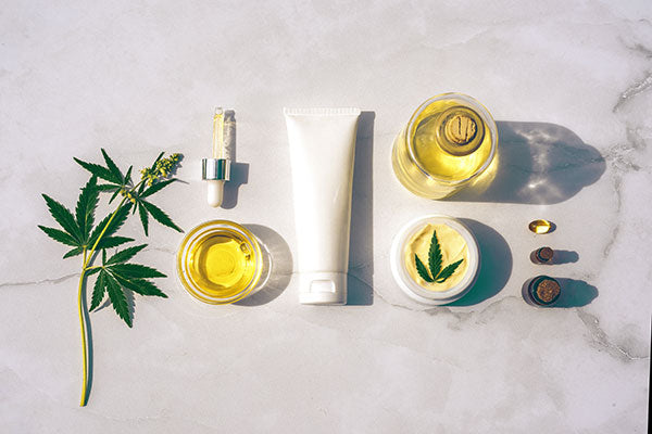 CBD in Your Daily Wellness Routine