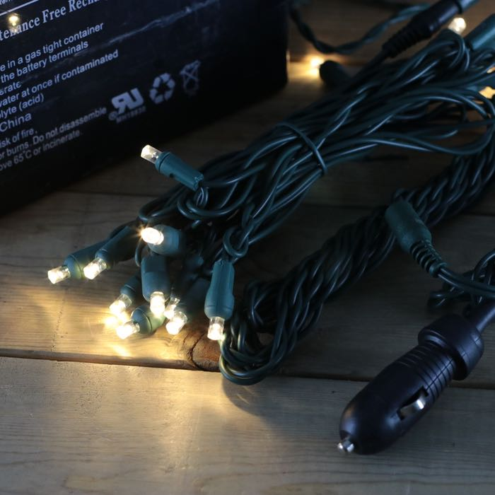 12 Volt LED Light Set Warm White Green Wire