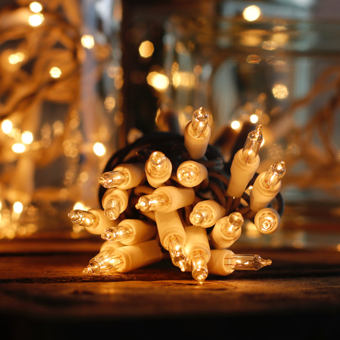 15 Clear Mini Lights with One Plug White Wire