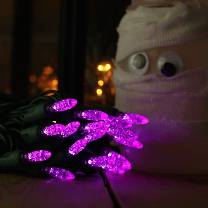 50 LED Purple M5 LED Christmas Lights on Green Wire