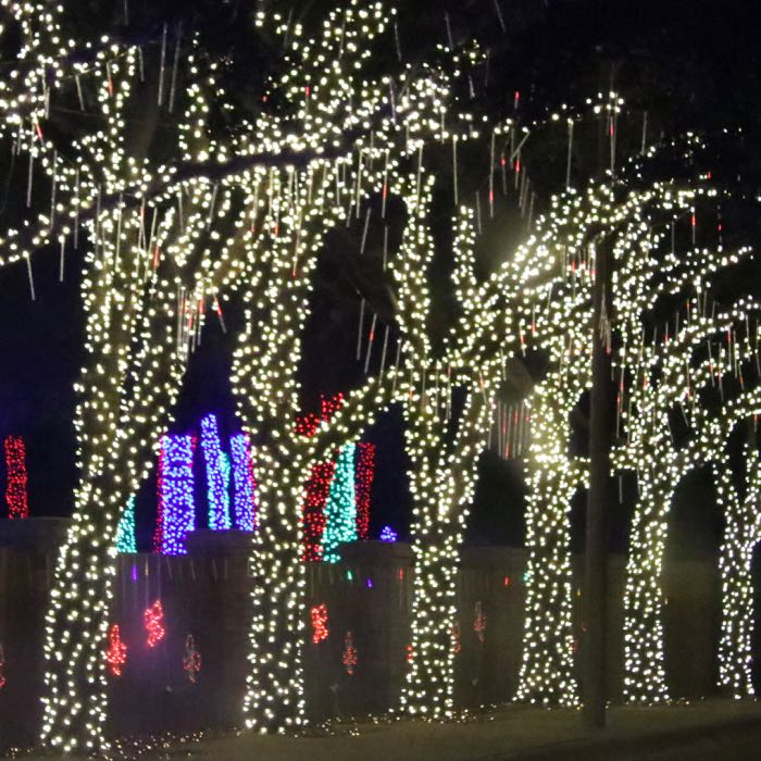 M5 Warm White Led Christmas Lights Green Wire