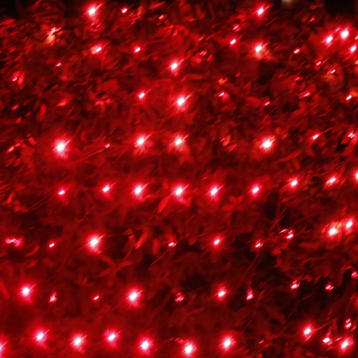 Red Net Lights