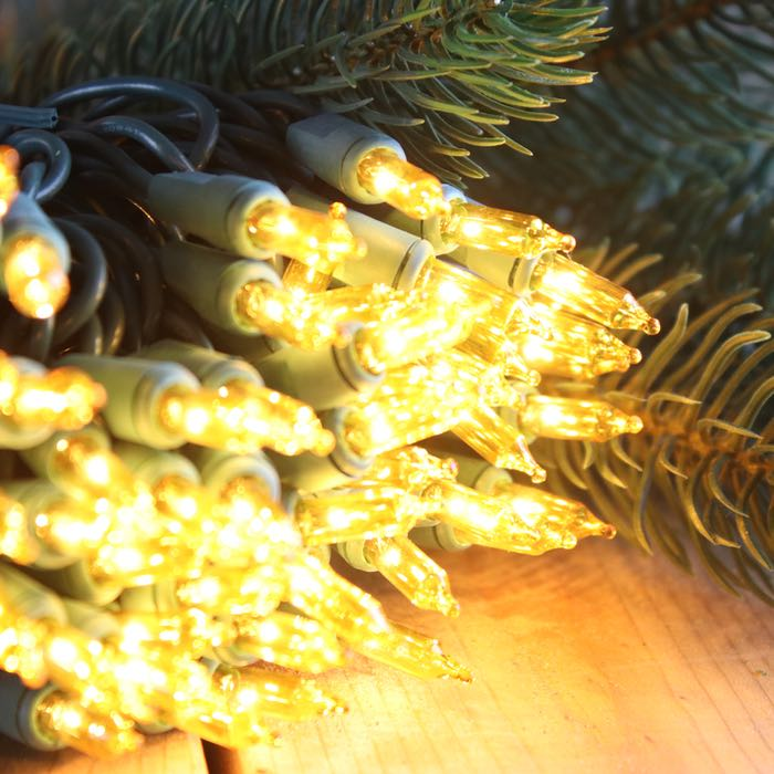 50 Yellow Mini Lights 4 inch Green Wire