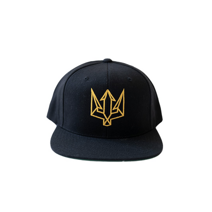 ZALE Black & Gold Snapback
