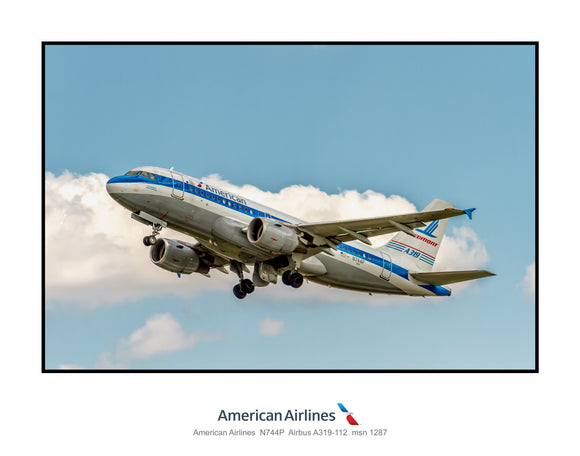 American Airlines Airbus A319 Piedmont Heritage (AB095LAJM11X14)