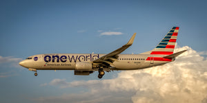 "American Airlines Boeing 737 ""One World"" (APPM10004)"