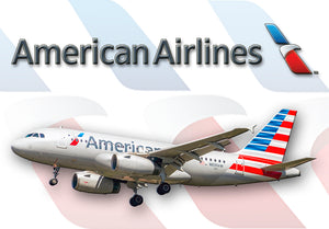 American Airlines Logo (LM14048)
