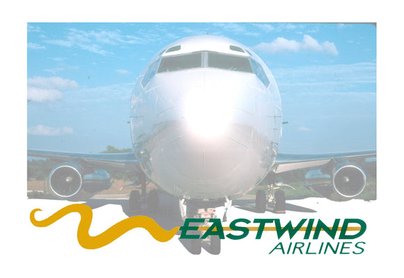 Eastwind Airlines Logo (LM14075)